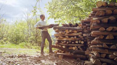 Renewable energy example wood for heat