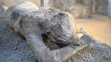 Example Body Fossil Pompeii Mould