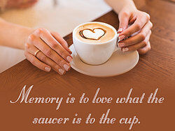 Saucer and cup of coffee as examples of analogy in literature