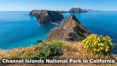 Marine Biome Channel Islands National Park California