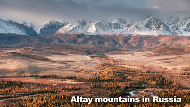 Taiga Biome Altay mountains in Russia