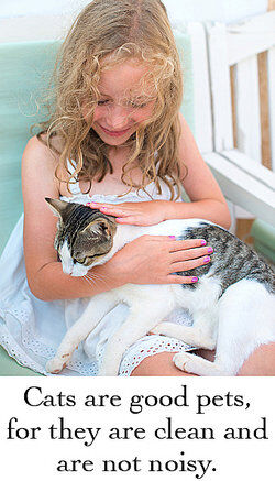 Girl petting cat as compound sentence examples