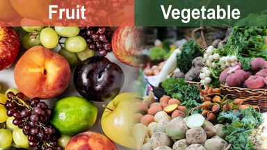 difference between fruit and vegetable
