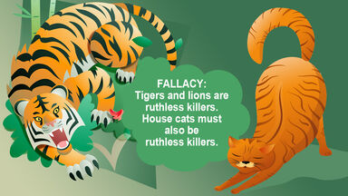 Cats as ruthless killers fallacy