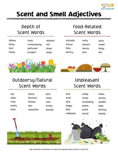 scent and smell adjectives
