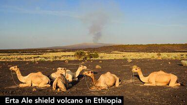 erta ale shield volcano ethiopia