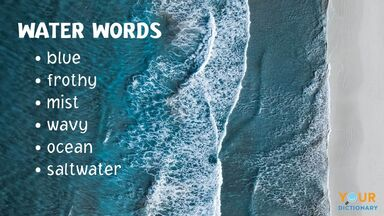 list of water words