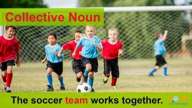 collective noun soccer team