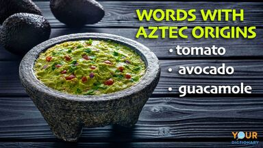 Aztec words used in english