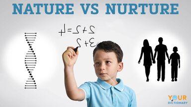 nature vs nurture example intelligence