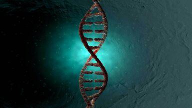 DNA double helix as examples of nucleic acids