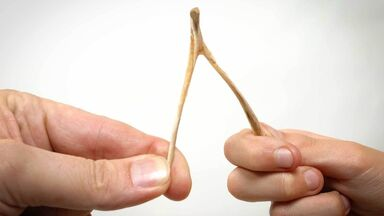 breaking a wishbone as examples of oral tradition