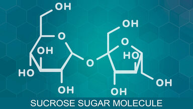 examples of organic compounds sucrose
