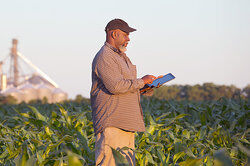 Man standing in field using iPad as examples of paradox
