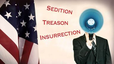 what is sedition shows man with megaphone