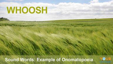 onomatopoeia example of air sound word whoosh
