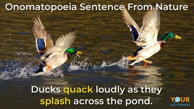 Onomatopoeia ducks in nature example