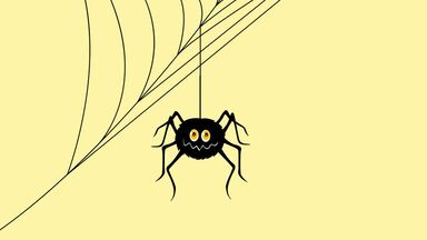 spider for spelling word game