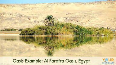 oasis example of Al Farafra Oasis, Egypt