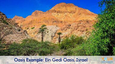 oasis example of Ein Gedi Oasis, Israel
