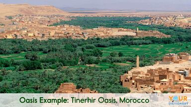 oasis example of Tinerhir Oasis, Morocco