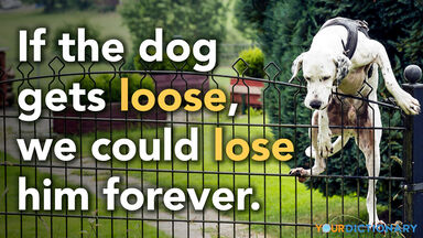 loose versus lose dog climbing fence