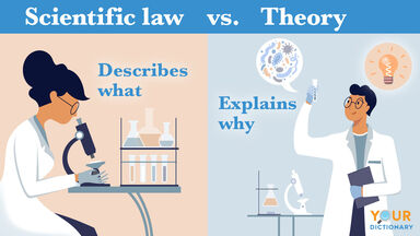 scientific law vs theory examples