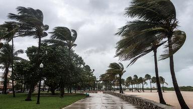 typhoon wind at the beach