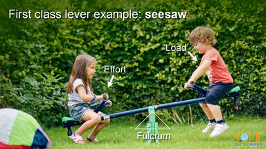 first class lever example of seesaw