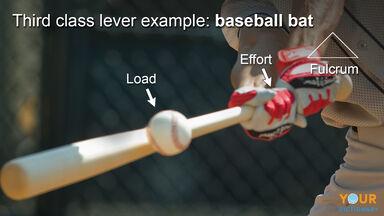 third class lever example of baseball bat