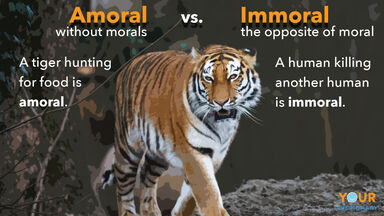amoral vs immoral example showing tiger hunting