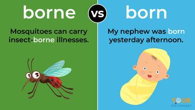 borne mosquito versus born baby