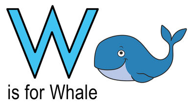 w words example of whale