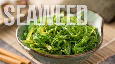 seaweed salad s food word