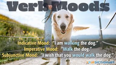 verb moods indicative imperative subjunctive