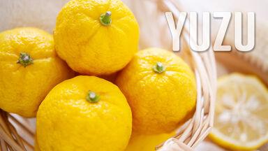 Japanese yuzu citrus food y culture