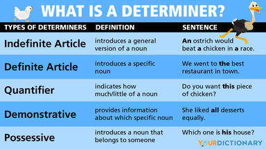 what is a determiner infographic