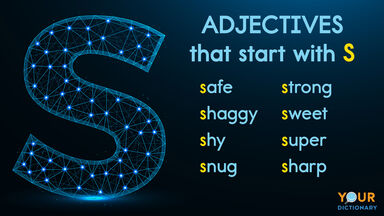 adjectives that start with S