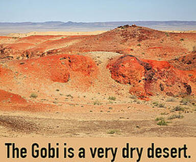 Gobi Desert as examples of tautology