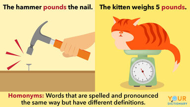 homonym example with the word pounds