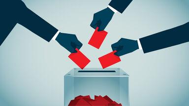 direct democracy example of voting