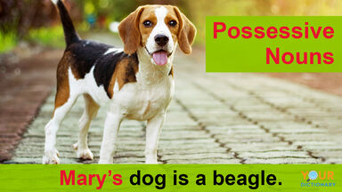 possessive nouns example Mary's dog