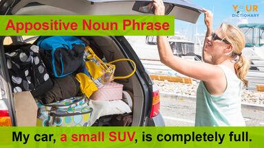 appositive noun phrase example