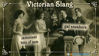 victorian slang jammiest bits of jam gal sneakers