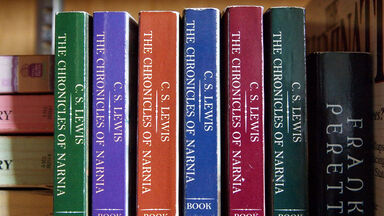cs lewis novel examples