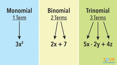 monomial binomial trinomial example