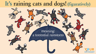 raining cats and dogs meaning