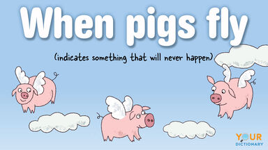 funny impossible idiom when pigs fly