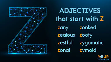 adjectives that start with z examples